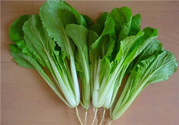 大雪节气吃小白菜能延缓皮肤衰老