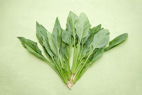 治疗经常便秘的小偏方 菠菜通便效果佳