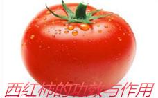 吃西红柿可以美白吗 吃西红柿有美白的效果吗