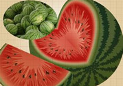 西瓜的功效与作用及禁忌