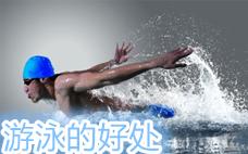 游泳怎么游减肥更快速 3招正确游法拥有迷人腰臀线