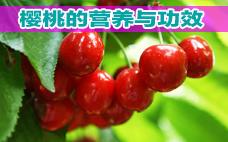 樱桃热量高吗 减肥可以吃樱桃吗
