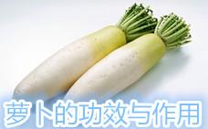 白萝卜丸子怎么做好吃 口感糯而不腻