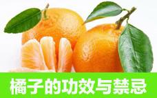 橘子皮是酸性还是碱性 碱性食物