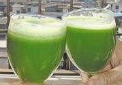 喝青汁能减肥吗?喝青汁真的可以减肥吗?