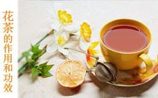 玫瑰花茶是凉性的吗?玫瑰花茶哪个牌子好