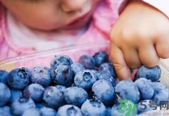 宝宝每天吃蓝莓的好处