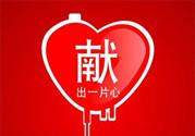 献血能减肥吗?献血减肥的效果怎么