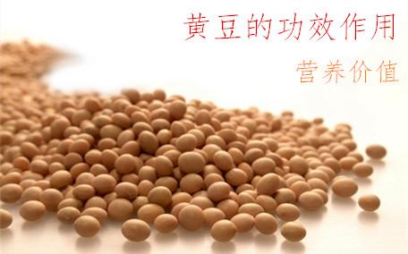 红芸豆的功效和作用 红芸豆和红豆的区别
