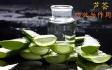 芦荟灌肤排毒是什么 芦荟灌肤的好处与副作用