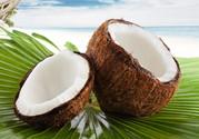 孕妇可以吃椰子肉吗?孕妇吃椰子肉好吗