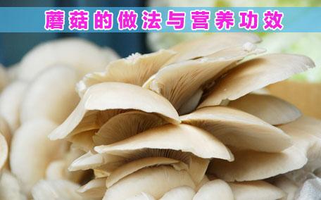 小鸡炖蘑菇怎么做好吃 小鸡炖蘑菇的简单做法