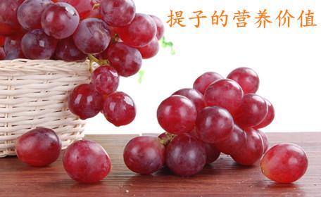 提子和葡萄的区别 提子和葡萄的共同之处