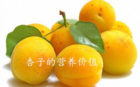 喝茶能吃杏吗?喝茶可以吃杏吗?
