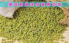绿豆小米粥怎么煮?绿豆小米粥的功效与作用