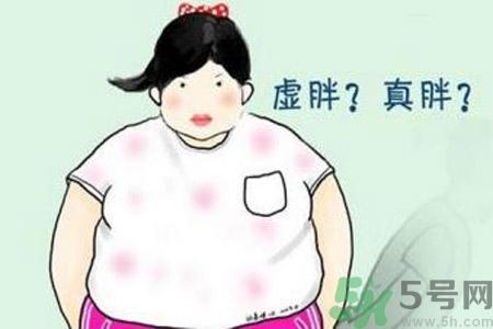虚胖的人吃什么可以减肥图片