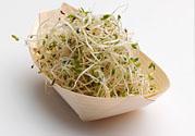 豆芽可以生吃吗?豆芽炒粉条的家常做法