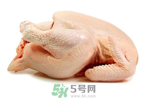 吃鸡肉减肥法可靠吗图片