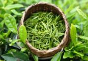 喝绿茶防癌吗?绿茶可以预防什么癌症?