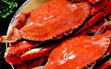 梭子蟹怎么看肥不肥 带籽的的梭子蟹肥不肥