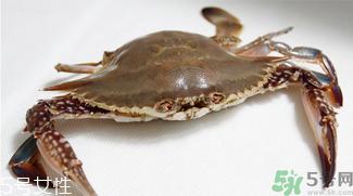 河南特色-水蟹粥怎么做?