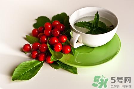 白茶与绿茶有区别吗图片