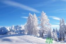 立冬适合喝什么汤?立冬养生喝什么汤最好?
