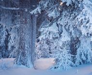 冬天多久洗一次澡合适?冬天几天洗一次澡最好?