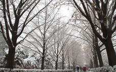 下雪能杀菌吗 下雪可以杀菌吗