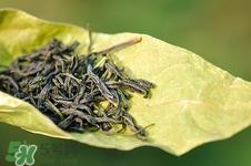 只喝荷叶茶能减肥吗图片