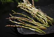 铁皮石斛是什么东西?铁皮石斛哺乳期能吃吗