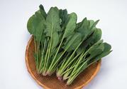 菠菜可以生吃吗?菠菜能直接生吃吗?