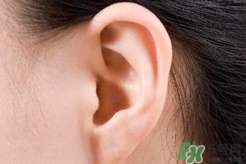 耳鸣按摩哪个部位图?耳鸣按摩方法