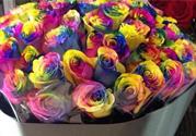 七夕情人节有必要送花吗?情人节为什么要送花?