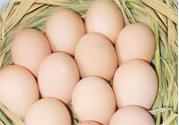 禽流感可以吃鸡蛋吗?禽流感期间能吃鸡蛋吗?