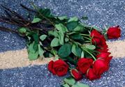 玫瑰花放在水里怎么养?玫瑰花插水里怎么养?