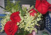 玫瑰花怎么养?玫瑰花怎么养久一点?