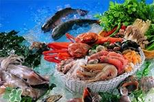 禽流感可以吃虾吗