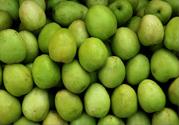 贵妃枣的营养价值 贵妃枣的功效与作用