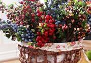 浆果色口红适合什么肤色?浆果色口红适合黄皮吗?