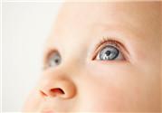 鼻影怎么画 鼻影画法步骤图