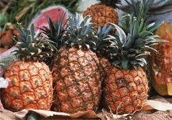 吃菠萝可以减肥吗?菠萝真的能减肥吗?