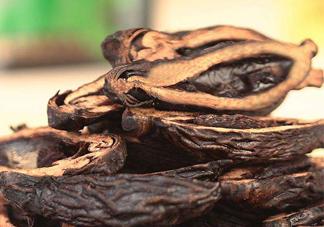 槟榔的营养价值 槟榔的功效与作用
