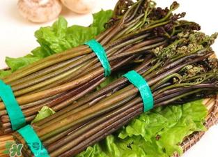 水蕨菜又名良蕨,是蕨菜中的姣姣者
