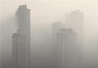雾霾对孕妇有什么危害?雾霾对胎儿有影响吗?