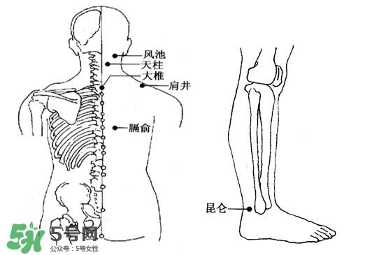 刮痧能治颈椎病吗?颈椎病刮痧正确图片