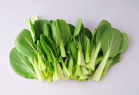 鸡毛菜是什么菜?鸡毛菜是小白菜吗