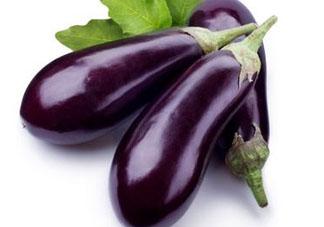 茄子什么季节吃?茄子什么时候成熟?