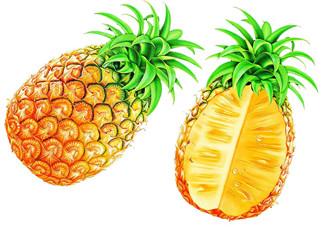 孕妇为什么不能吃菠萝?孕妇不能吃菠萝的原因