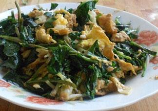 婆婆丁炒鸡蛋的营养价值_婆婆丁炒鸡蛋的功效与作用